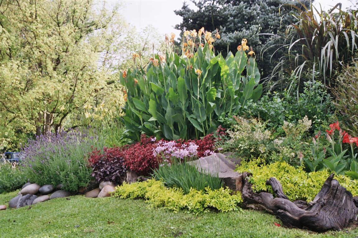 Jardines exclusivos for Jardines con canas y piedras